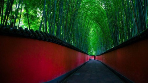 Visit 20 Scenic Spots for Free in Chengdu