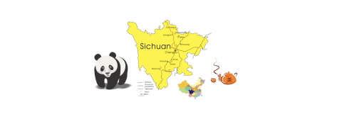Sichuanese Sayings: He's Cute? That's Fake!
