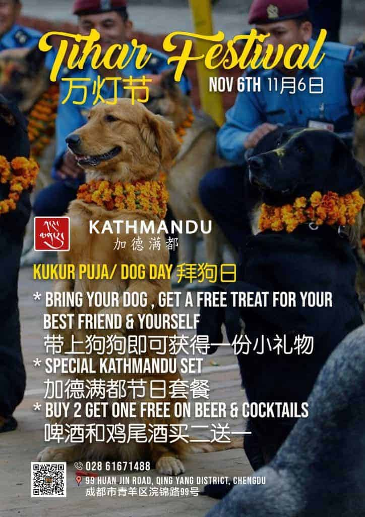 thihar-festival-ktm-Dog-Day