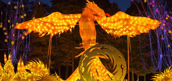 aa-Jinsha-Lantern-Festival-2019