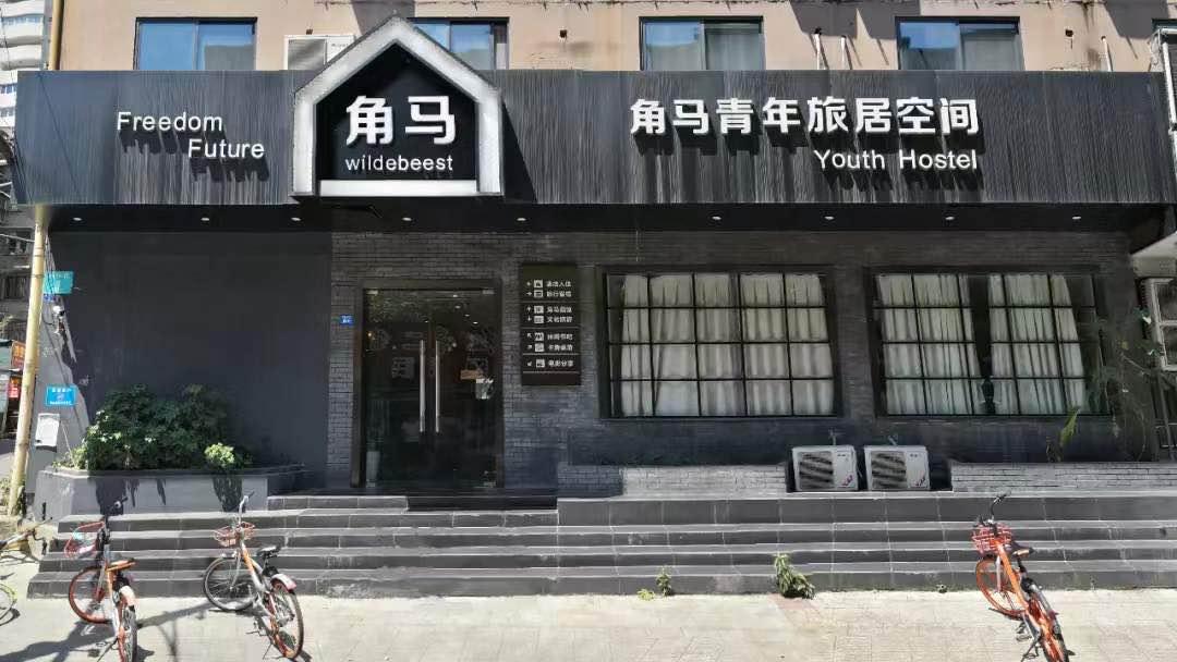 Wildbeest Chengdu Expat 4 1